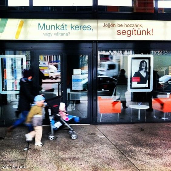 STAREE Zin Smith: Looking for a job? Budapest