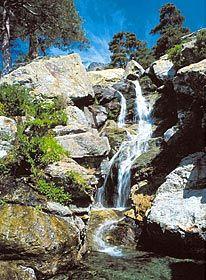 Site officiel du tourisme en Corse - Tous les bons plans, séjours et réservations pour vos vacances en Corse avec Visit-corsica.com