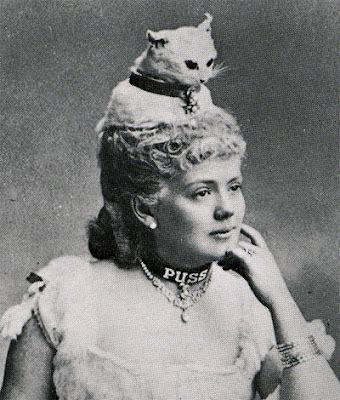 Taxidermy cat hat.  Apparently this was a thing because I have a book on Victorian fashion that describes a tippet with a real kitten head at each end.