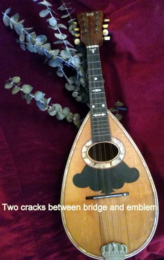Hey, I found this really awesome Etsy listing at https://www.etsy.com/listing/258529018/hard-to-find-beautiful-vintage-mandolin