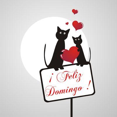 Feliz Domingo. - Página 15 C4565a63d2aff7268308e50486751d1e