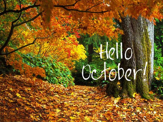 Hello October month october hello october hello october quotes october quotes