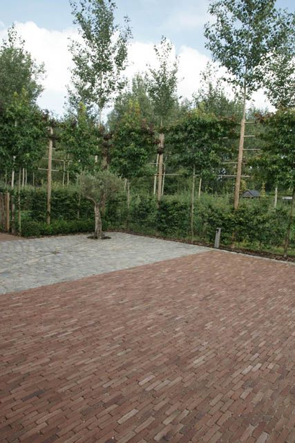 Ancienne Belgique Bordeaux Design Tuinaanleg De Pauw Landscape Paving Pinterest Clay