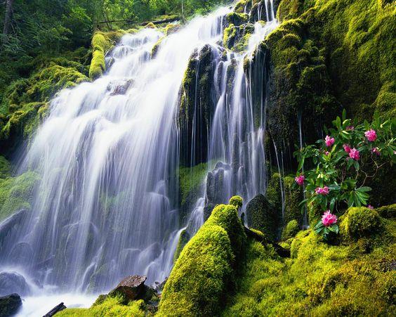 Exotic Waterfall Wallpaper