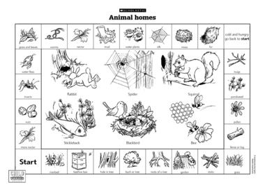 a fun game for exploring animal habitats perfect for your science and nature topics 4th. Black Bedroom Furniture Sets. Home Design Ideas