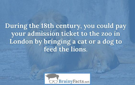 Animal Facts : Zoo admission ticket | did you know