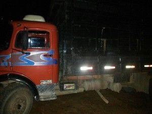 Cazuza: Quatro são presos suspeito de roubo de gado no Cen...