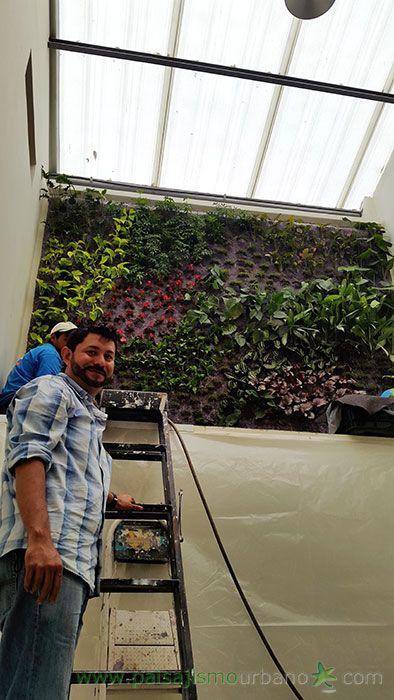 Jardín vertical realizado en Guatemala por Paisajismo Urbano y su franquicia local By Botanik