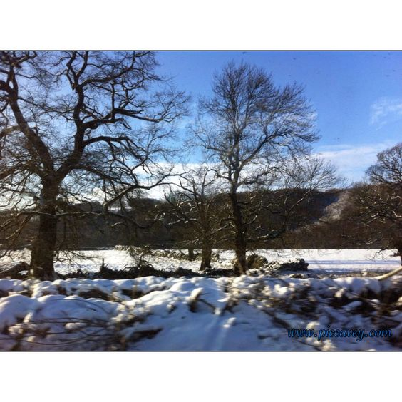 Snowy winter day in cheshire countryside