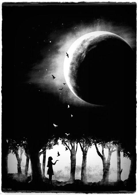 Sarah Addison Allen/ Chasing the Moon