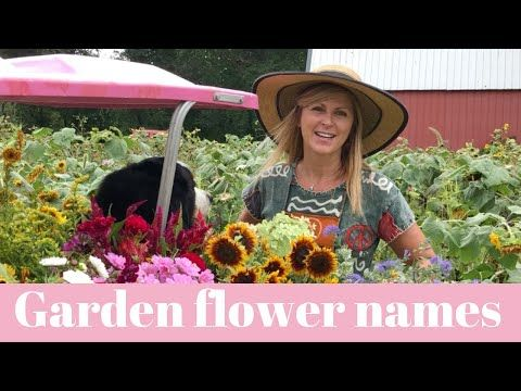 Kelly Lehman Garden Flower Names From Our Harvest At Cranbury F