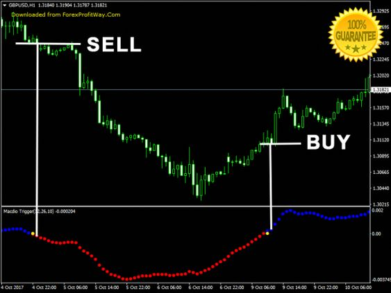 The Forex Forexsignalsdudes Forex Signals Dudes Learning