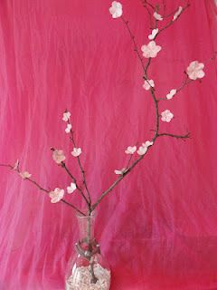 Kirschblütenzweig