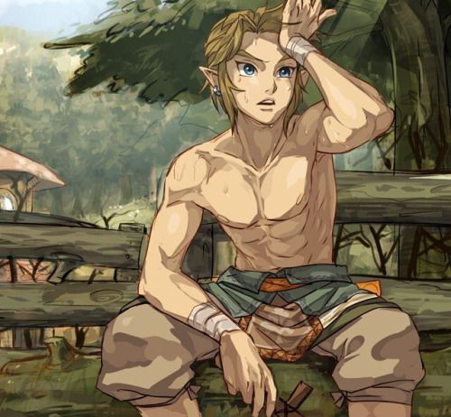 Funny that I have to pin it on this board...HAHAHAHAHA Link - Twilight Princess