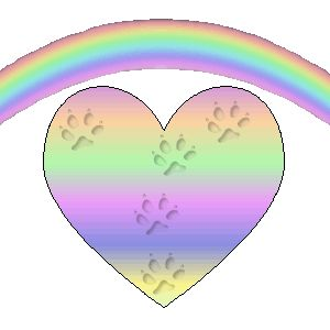 Image result for rainbow bridge for cats clipart