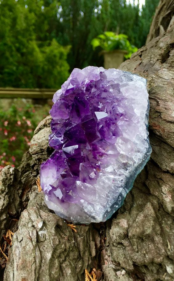 Large Amethyst Cluster  Amethyst is known to increase spiritual and psychic…