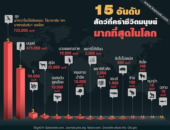ไข้เลือดออก นอกจากจะเป็นปัญหาสาธารณสุขของประเทศไทยแล้ว ยังเป็นปัญหาสาธารณสุขทั่วโลกโดยเฉพาะประเทศในเขตร้อนชื้น
