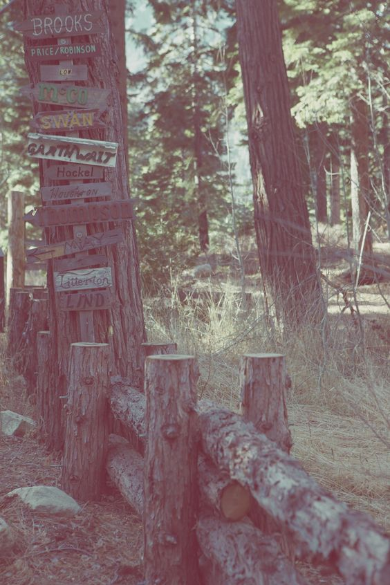 Choose your path. Lake Tahoe, CA. Photo by Harper Smith. http://www.gsom.com/places
