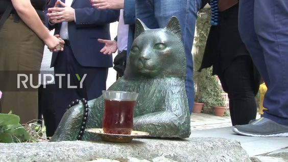 Turkey: Deceased Internet cat Tombili immortalised in statue