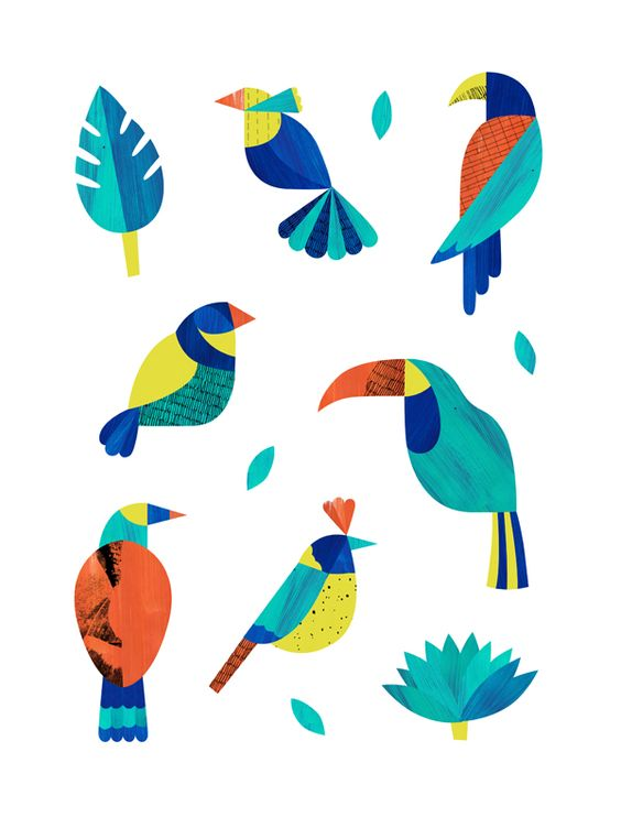Tropical birds / Oiseaux tropicaux