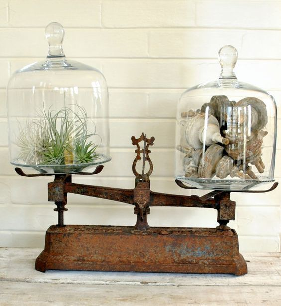 Under Glass | Decorating with Glass Cloches | ConfettiStyle