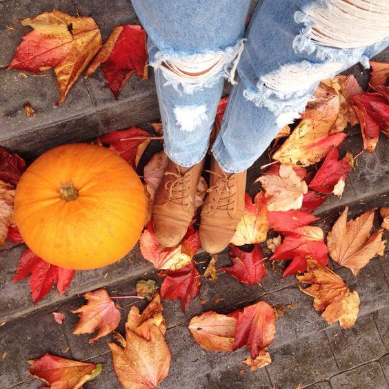 Pumpkins and denim!   www.lifeofaladybear.com