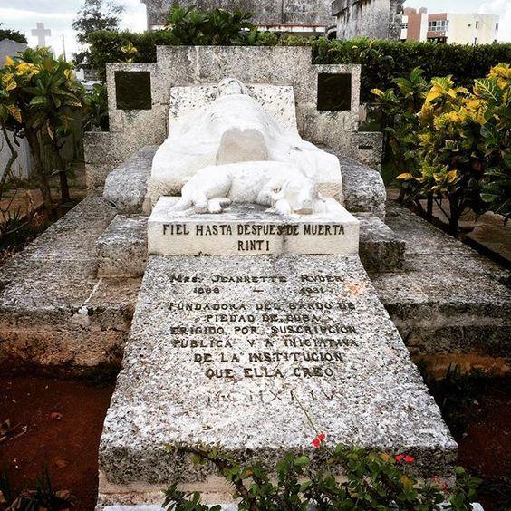 Una de las tumbas más famosas del Cementerio de Colón en La Habana. Rinti era el perro de Jeanette Ryder una americana que residió en Cuba a principios de s. XX. Cuando ella murió el perro iba a su tumba todos los días. Cuando el perro murió a los pies de su dueña los empleados del cementerio le hicieron también su tumba allí mismo. #latergram by varis