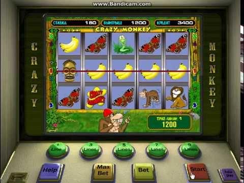Виртуальные игровые автоматы обезьянка для pc пиковая дама какую роль играют в повести три карты