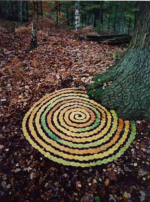 British artist Tim Pugh makes elaborate artwork on site out of sticks, leaves, pine cones, and other found materials in nature.