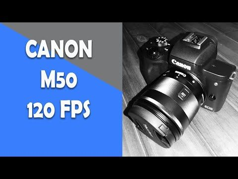 Canon M50 120 Fps Frames Per Second Youtube In 2020 Youtube Tutorials Fps Youtube