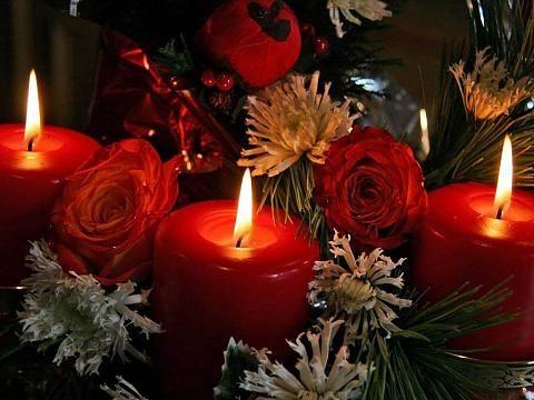 19 معلومة يجب أن تعرفها عن ورود جميلة مع كلام جميل متحرك اليوم ورود جميلة مع كلام جميل متحرك Red Roses Rose Flowers
