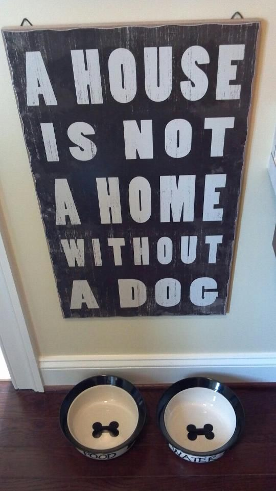 """love this above the dog bowls. maybe write """"pets"""" instead, gotta include the cat!"""