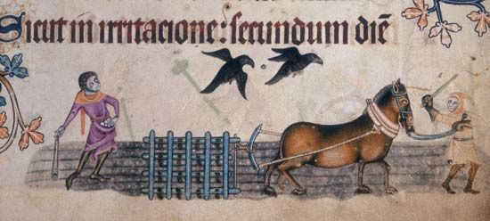 ploughing 1340 in the Luttrell Psalter British Library