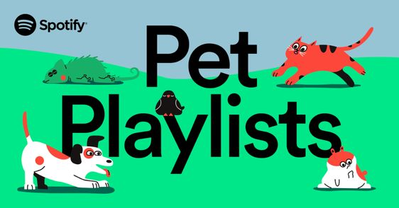 Get Your Pet Playlist Music For Best Friends In 2020 Pets Cute Baby Animals Instagram Story