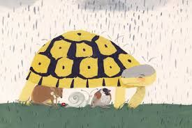 Image result for illustration home