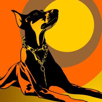 Dobermann orange 3 x popart Hund Poster Retro Design Foto Porträt Portrait Bild   eBay