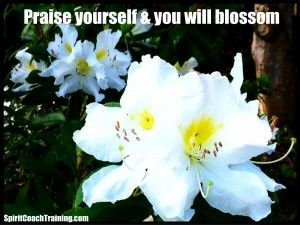Praise Yourself and You Will Blossom