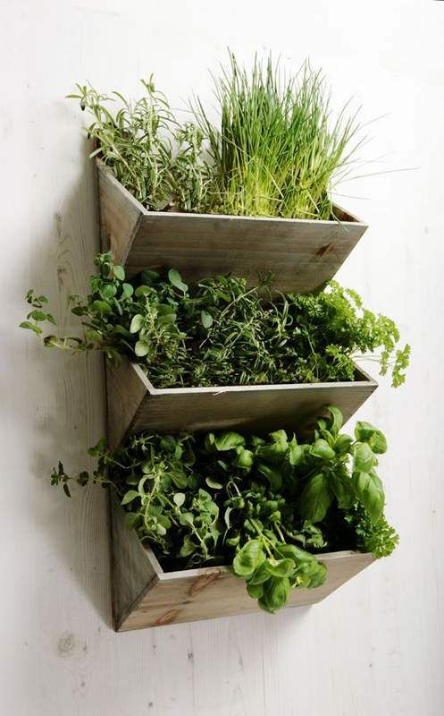 In this indoor herb garden, each tier can be used for planting different herbs. Isn't that cool?? #smallgardenideas #sgi: