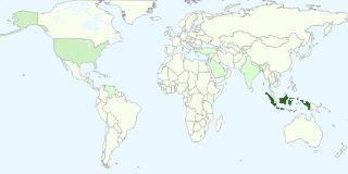 salonku mulai dikenal di berbagai negara, sesuai statistik google.. wow bangettttt