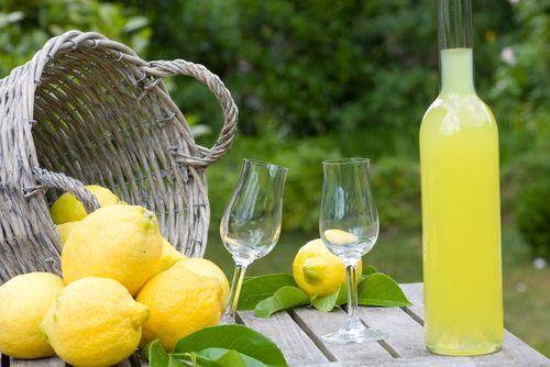 λιμοντσελο: Lemon Grove, Campania Recipes, Holiday Food, Italian Drinks Cocktails, Italian Food Drink, Drinks 3, Lemon Yellow, Lacristan S Recipes, Cooking Recipes