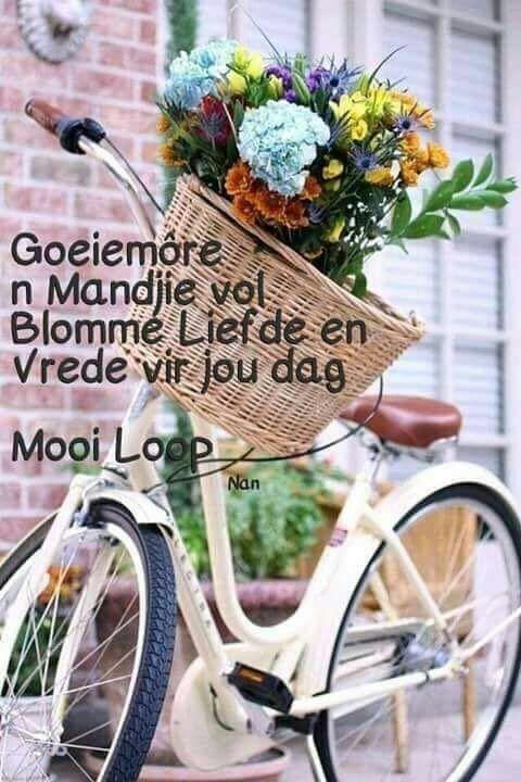 Pin By Erika Westman On Afrikaans Bicycle Basket Old Bicycle