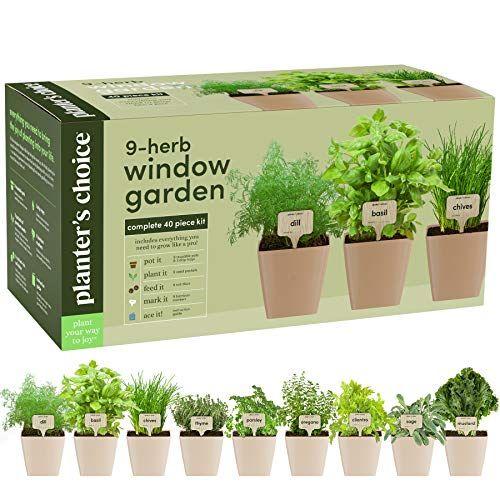 10 Best Indoor Herb Garden Growing Kits In 2020 Planting Herbs Herb Growing Kits Indoor Herb Garden