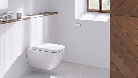 Bathroom With Geberit Omega Cover Plate And Remote Flush Actuation Type 70 Floating Toilet Concealed Cistern Toilet Cistern