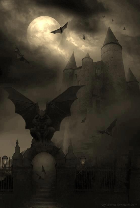 ATMOSPHÈRE  HALLOWEEN - IMAGE Les couleurs du format peuvent renvoyer à Halloween, sur cette image, l'atmosphère est stressante et peut donc être reliée à ça.