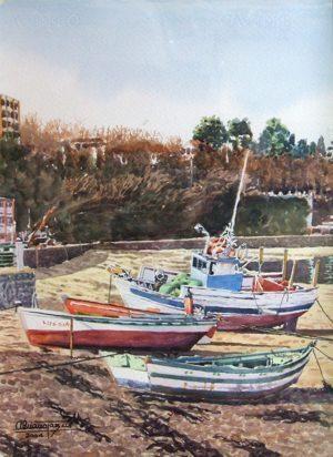 Bajamar en Redes, 2004, 50x35 cm. Adriano paz martinez