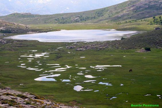 Escapades Pyrénéennes et voyages: Lac Nino (Ninu) - Randonnée - Calacuccia (2B) Cors...