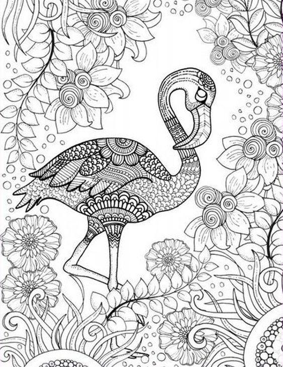 Flamingo Coloring Pages Google Search Vogel Malvorlagen Ausmalbilder Kostenlose Ausmalbilder