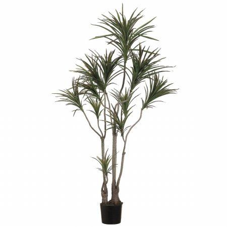 6' Outdoor Dracaena Marginata Tree w/418 Leaves in Plastic Pot Green Burgundy (Pack of 2) *** Visit the image link more details.