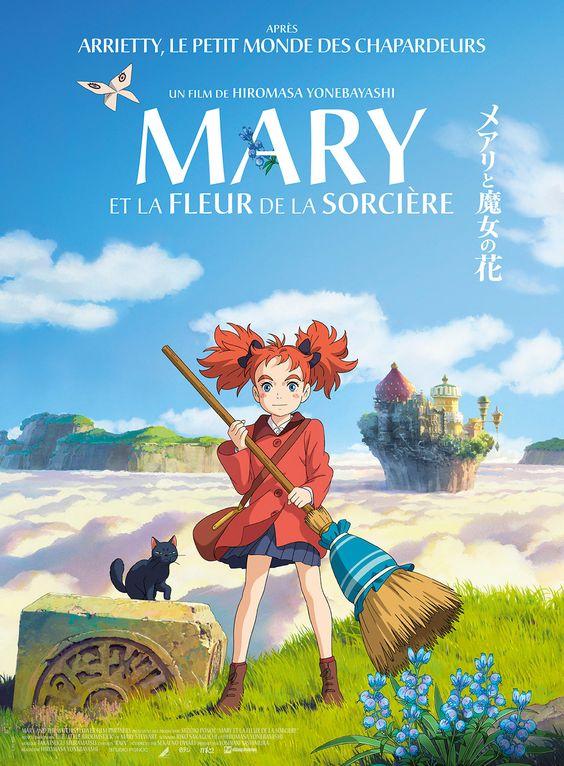 """C'est l'été. Mary vient d'emménager chez sa grand-tante dans le village de Manoir Rouge. Dans la forêt voisine, elle découvre une fleur mystérieuse qui ne fleurit qu'une fois tous les 7 ans. On l'appelle la """"fleur de la sorcière"""". Pour une nuit seule..."""
