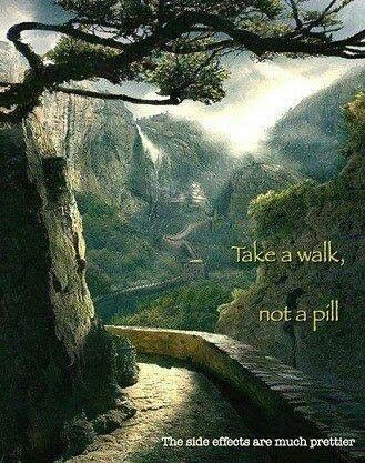A walk in Nature is so healing & the side effects so beneficial!